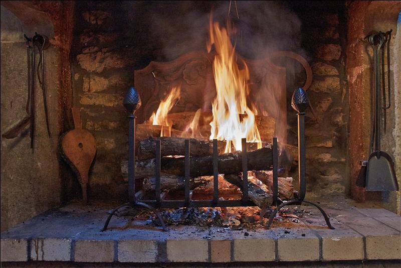Quizz le quiz d 39 automne quiz culture g n rale - Prix d une stere de bois ...