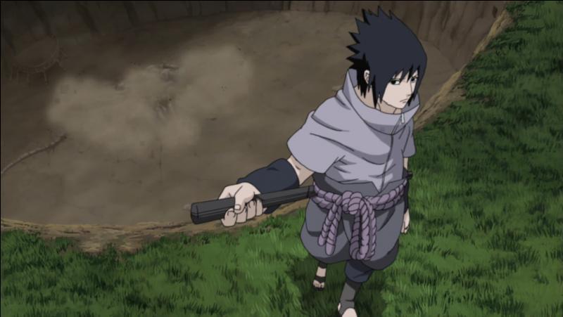 Et voici : La Grande Guerre ninja (2/6)