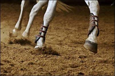 Pas de pied, pas de cheval . Cela veut dire...