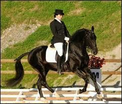 Le cheval a un diaphragme.