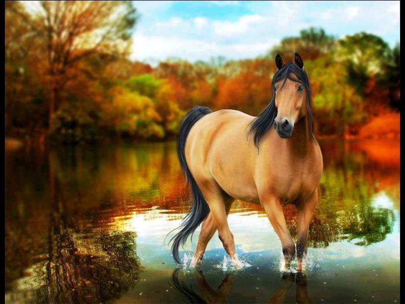 De quelle année la domestication du cheval date-t-elle ?