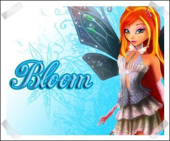 Quelle est la date de naissance de Bloom ?
