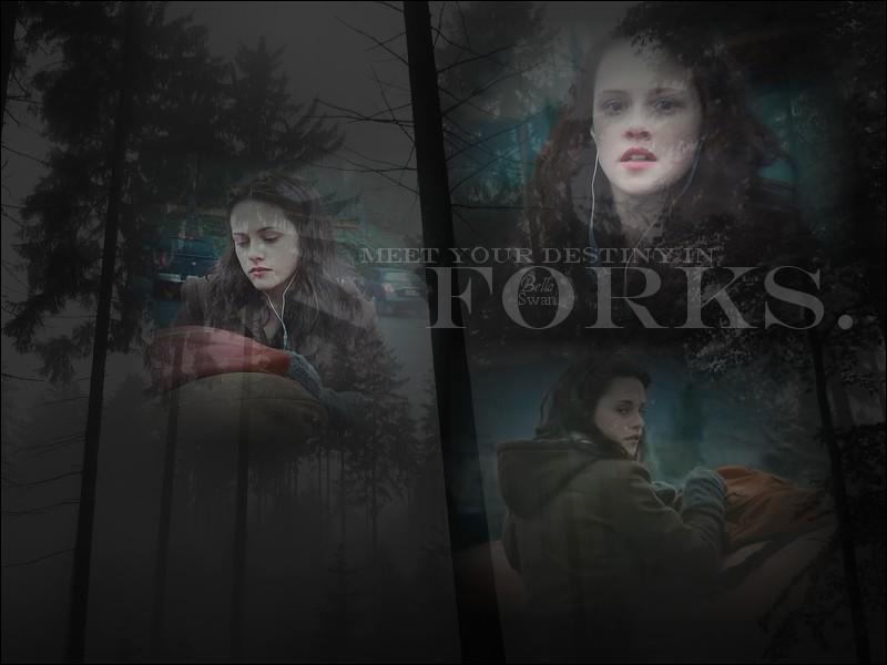 A Forks, où travaille Bella ?