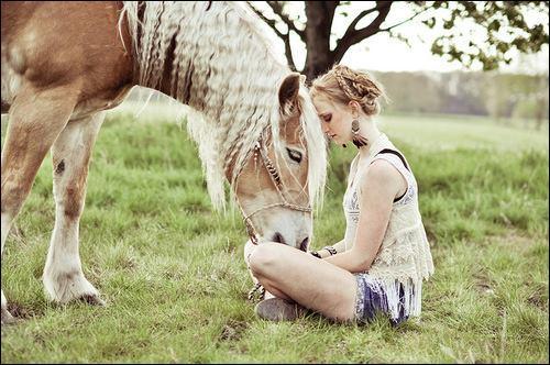 Les plus belles photos de chevaux sont particulièrement faites par...