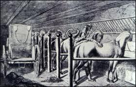 Être employé pour s'occuper des chevaux, des écuries, des selleries... , c'est exercer le métier de :