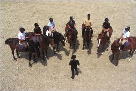 Un métier qui consiste à enseigner l'art de monter à cheval. Quel est-il ?