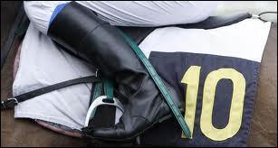 Comment appelle-t-on les personnes qui montent les chevaux de course ?