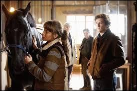 La personne qui s'occupe des chevaux de compétition est nommée :