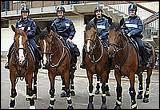 Quelle force urbaine utilise les chevaux comme moyen de transport ?