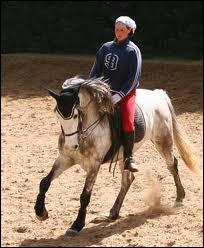 Un cheval qui est sur la piste à main gauche et qui galope à droite est ...