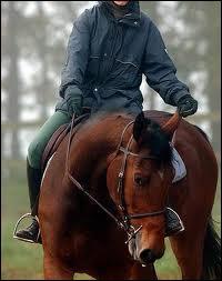 La rêne qui a pour effet de faire tourner le cheval du côté où la main agit, s'appelle...