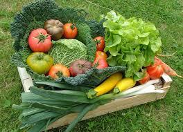 Les fruits et légumes dans les expressions