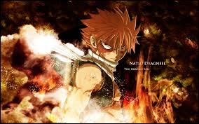 Quel est le type de magie de Natsu ?