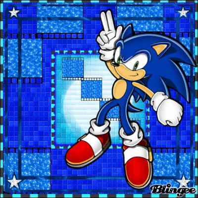 Quel est un des surnoms de Sonic ?