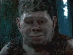 Qui est ce  demi-frère  de Hagrid ?