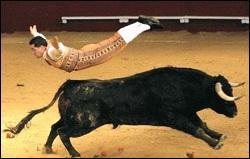 Olé ! La couleur rouge rend les taureaux agressifs :