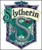 Lequel de ces personnages de Harry Potter n'a jamais été directeur de la maison Serpentard ?