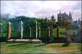Quel ballon de Quidditch a été ensorceler ?