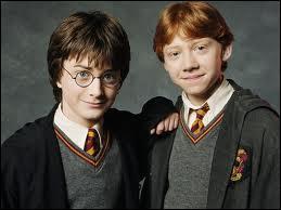 Comment Harry et Ron se sont-ils rendus à l'école cette année ?