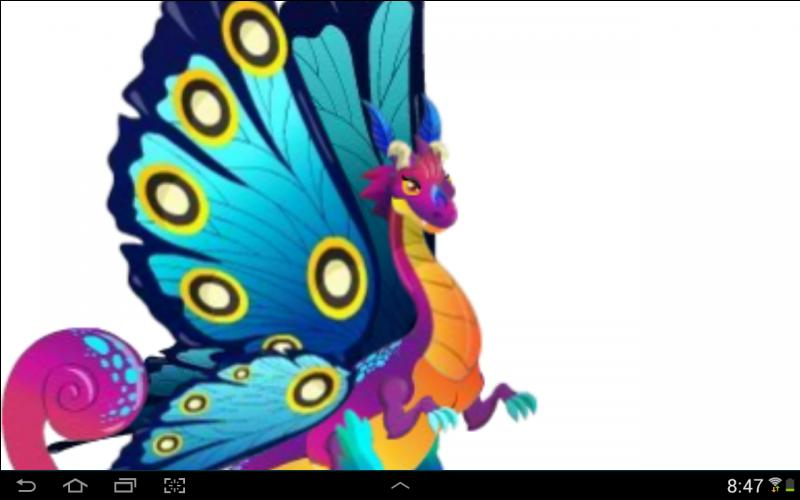 De quel type sont ces dragons :  Dragon papillon  ?