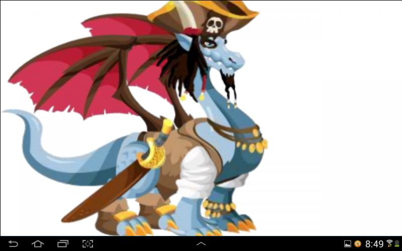 De quel type sont ces dragons :  Dragon pirate  ?