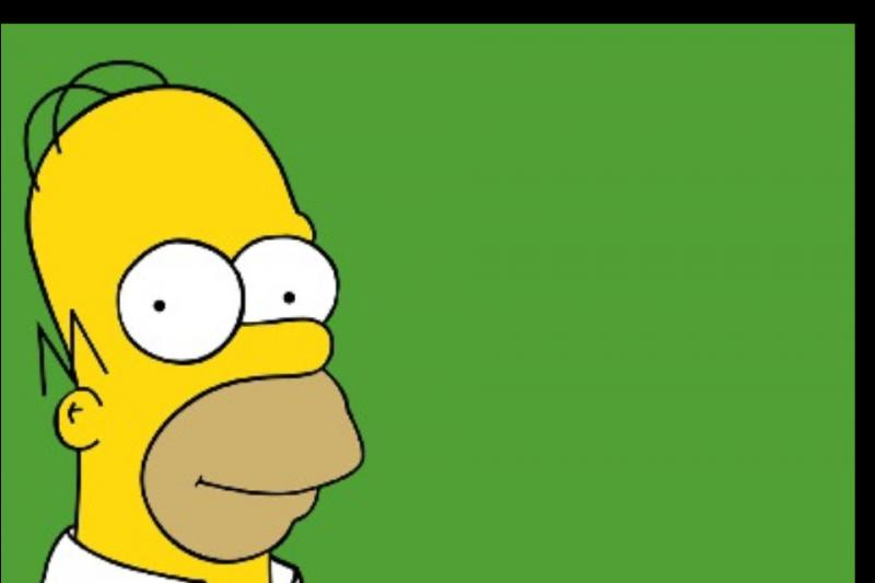 Qui est l'homme de Marge Simpson ?