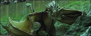 Quel est ce (charmant) dragon que Harry doit affronter ?