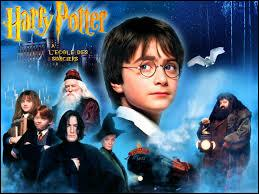 Qui a inventé  Harry Potter  ?