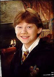Qui est le meilleur ami de Harry ?