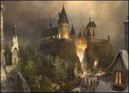 Comment s'appelle le château où il étudie ?