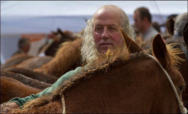 Comment s'appelle ce métier où l'on s'occupe des chevaux dans un haras, ou, autrefois, dans un domaine ou un château ?