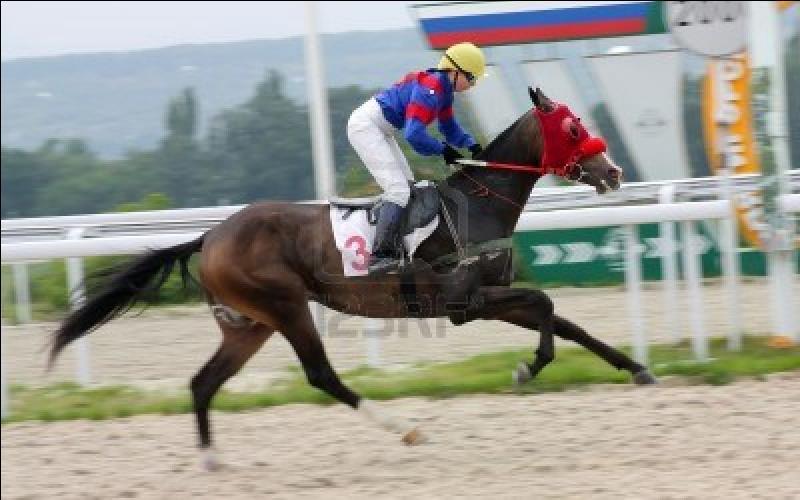 Quel est le nom de ce métier qui consiste à monter les chevaux de course ?