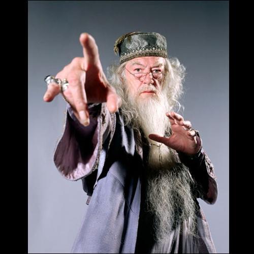 Quand le sage montre la lune, l'imbécile regarde le doigt.   Qui regarderait l'index d'Albus Dumbledore ?