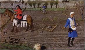 Comment nomme-t-on une terre laissée au repos pour qu'elle retrouve la fertilité ? (mot couramment utilisé au Moyen Âge)