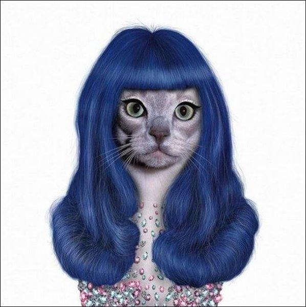 À qui ressemble ce chat aux cheveux bleus ?