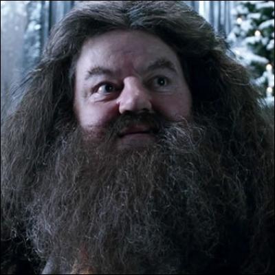 Il y a marqué Hagrid, sur ma liste.