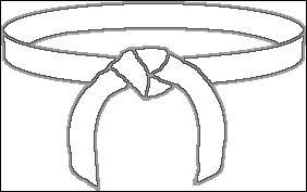 Quelle est la couleur de la deuxième ceinture de judo que l'on obtient ?