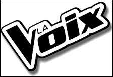 Comment s'appelle cette voix ?