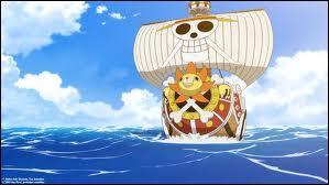 Quel est le Grand Corsaire qui a protégé le Thousand Sunny ?