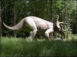 Le tricératops est :