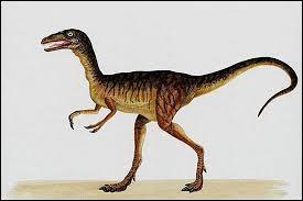 Quel est ce dinosaure ? C'est le plus petit dinosaure.