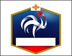 A quelle marque de sport ce logo appartient-il ?