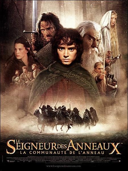 Dans  La communauté de l'anneau , quel personnage fut inventé pour le film et n'apparaît pas dans le livre ?