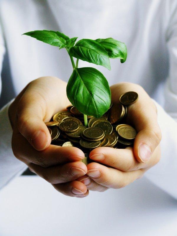 Quizz le d veloppement durable quiz nature ecologie - Plafond livret developpement durable societe generale ...