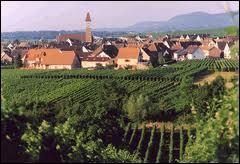 Pour commencer, je vous emmène à la découverte du village alsacien de Bennwihr, dans la Communauté de Communes du Pays de Ribeauvillé. Nous serons donc dans le département ...