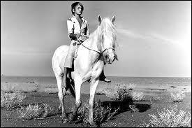 Quel est ce cheval blanc ?