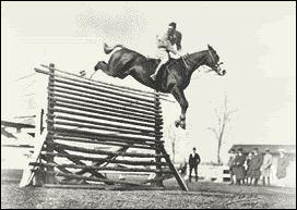 Qui est ce cheval ayant battu le record du monde de saut en hauteur ?