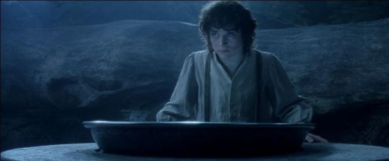 Au moment où Frodon regarde dans le miroir, que voit-il ?