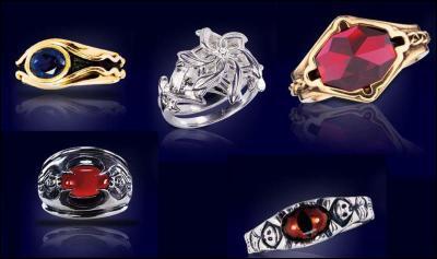 Quelle chose devait être transmise à travers ces anneaux ?