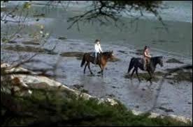 Comment appelle-t-on le  cheval du fleuve   ?